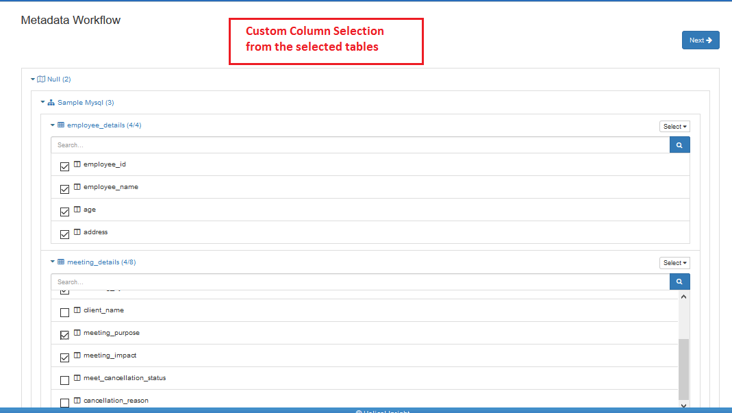 custom-column-selection